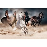 Glastavla Horses - 120x80 cm