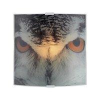Owl Vägglampa