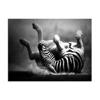 Canvastavla Zebra