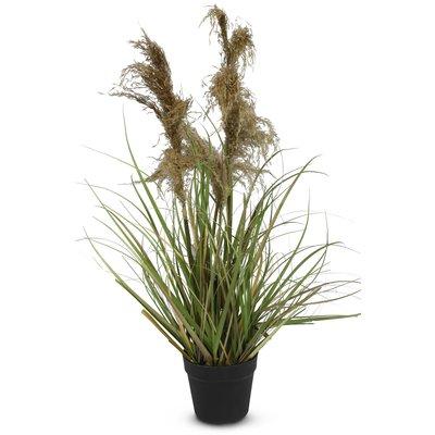 Konstväxt - Gräs/Pampagräs H94 cm