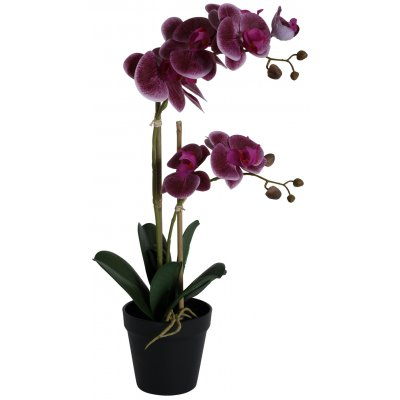 Konstväxt - Orkidé 2 stänglad H54 cm - Mörkrosa