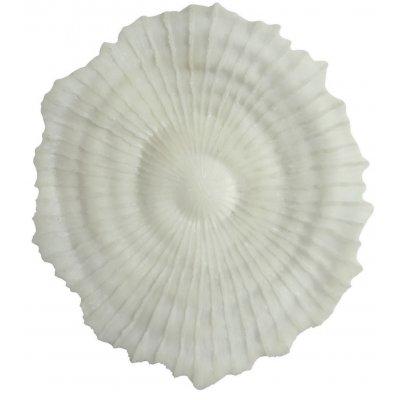 Korall väggdekoration D 48 cm - Ljus