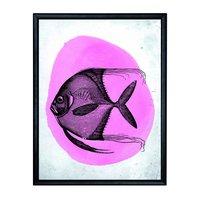 Tavla fisk - Svart ram